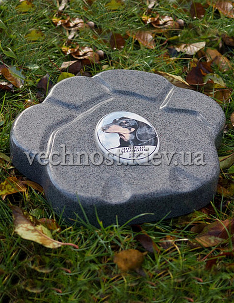Памятник для животных Лапа