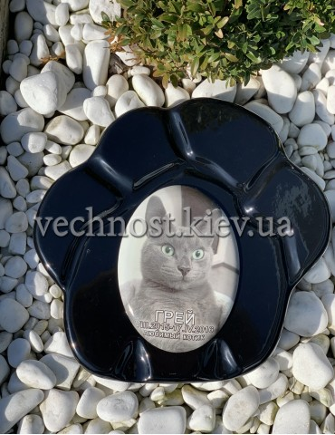Памятник для кошек